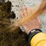 Junge Frau legt Hand auf vermoostem Felsen, sie traegt ein Outdoor Tau Armband von Fischers Fritze am Handgelenk
